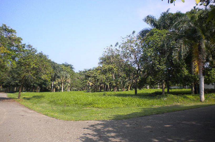 Cheap caribbean land for sale