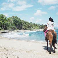 sea-horse-ranch-horse-beach